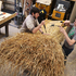 Learning the techniques of long straw thatching